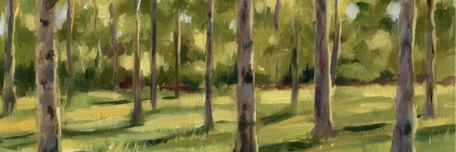 Faire le portrait d'un arbre